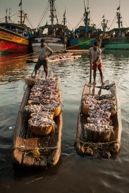Fisher Folks